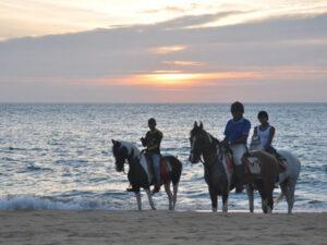 beach-horse-riding-haya-lanka