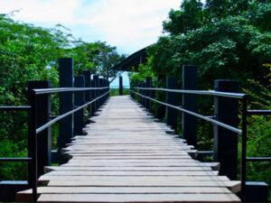 bundala-national-park-sri-lanka-haya-lanka