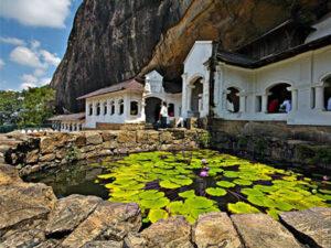 dambull-srilanka-haya-lanka