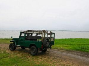 kaudulla-national-park-srilanka-hayalanka