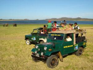 yala-national-park-haya-lanka