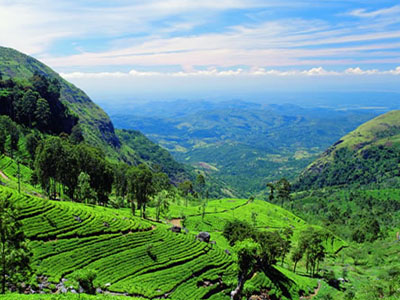 hill-country-destination-haya-lanka